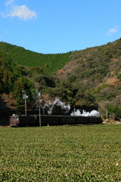 茶畑に残る黒煙が良い感じです。