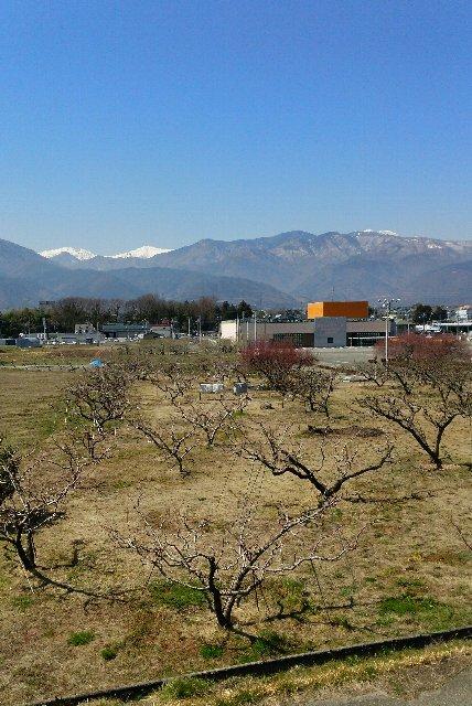 反対側には八ヶ岳が見え、仕事するのが惜しい風景でした。