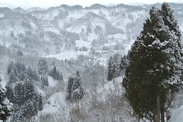 昨日、宿に着いたときよりも雪が綺麗になったような気がします。