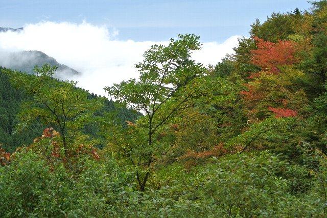 ここから山を下りながら、分厚い雲の中を抜けていきました