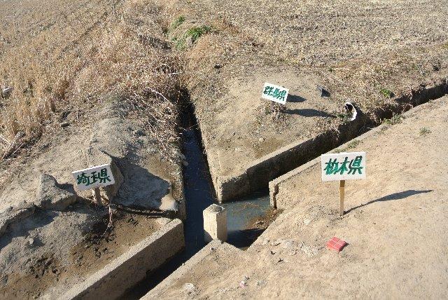 コンクリート製の杭には記念プレートが設置されており、「三県境界」の文字と加須市、栃木市、板倉町の各自治体名と、経緯度が刻まれている