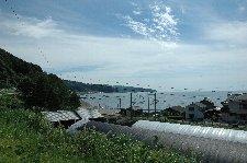 狭い平地の中に、箱庭のような漁村が広がっています。