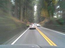 渋滞が起きた時には、この杉並木が恨めしく感じるのでしょうね。
