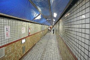 年期の入ったトンネルですから、多少かび臭いのは致し方ないのか...?