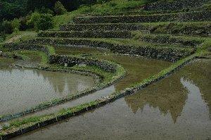 日本棚田百選にも選ばれた見応えのある棚田です。