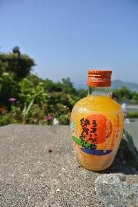 このエリアではオレンジジュースの肩身が非常に狭いです(笑)。