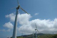 好天の日に無数の風力発電の下に立つのは初体験、感動しました!