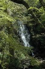小さいけれど、なかなか味のある滝でしたよ。
