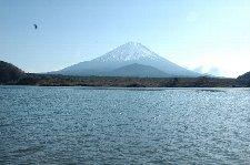 少し国道から離れて、湖畔沿いの道を進むと、目の前に富士山がど〜んと見えてきます。