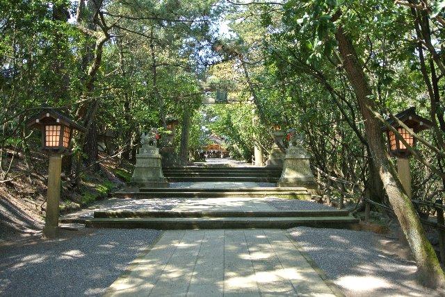 石碑に立ち寄る前に、神社をお参りし、可愛い巫女さんに説明してもらいましょう。
