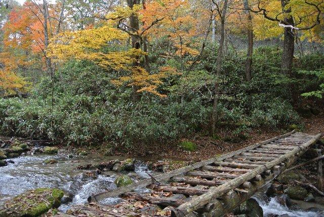 柳沢峠よりもやや丹波山側、国道脇の駐車スペースから川へ下りていくと...。