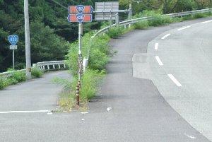 左側に細々と延びる道が国道438号線。