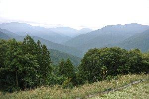 槍ノ尾までもう一息、川井峠を越えると一旦坂を下り、再度槍ノ尾への上り坂となる。