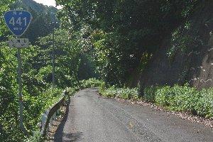 この隘路を越えれば大洲市街です。もう一頑張りしましょう!