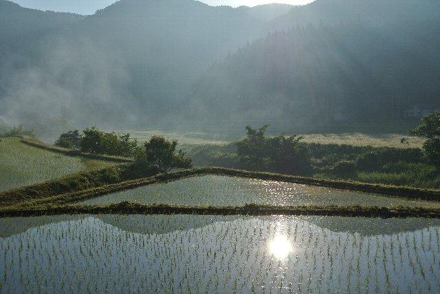 盲腸区間をとっとと潰して次の場所へ...と思っていたら、小代集落周辺で美しい朝の情景に出逢えました。