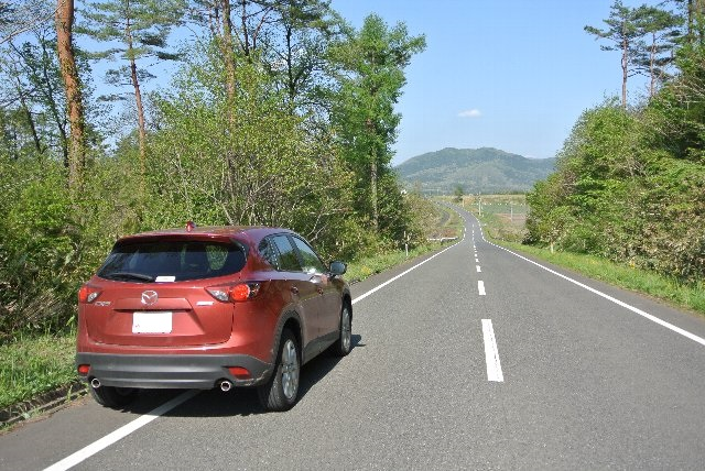 北海道や東北の高原に見慣れていると、蒜山の高原上に水田が広がる風景は少々不思議な感じを受ける。