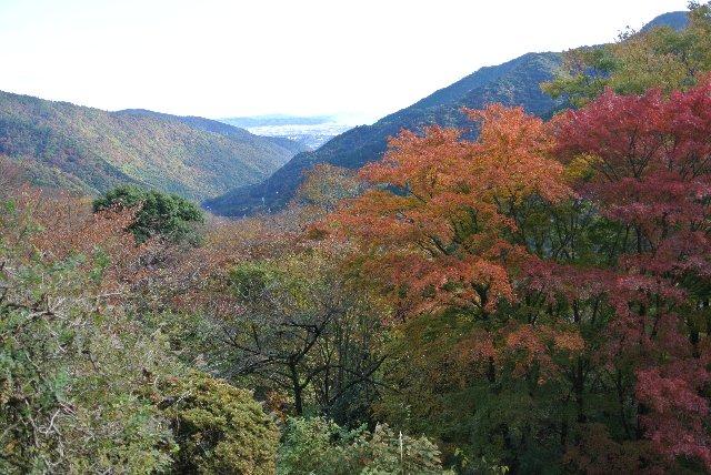何を考えたのか、ナビが険しいルートを選択した。これが功を奏して美しい風景に出逢えました。