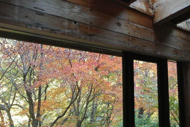 休憩所として建てられた立派なログハウスの窓から紅葉を楽しむ。