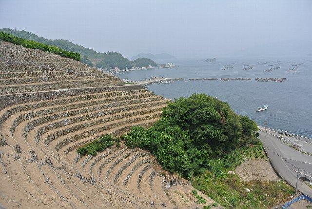 海岸沿いに累々と築かれた段々畑は、平地の少なかった宇和島伊達藩にとって貴重な畑地だった。