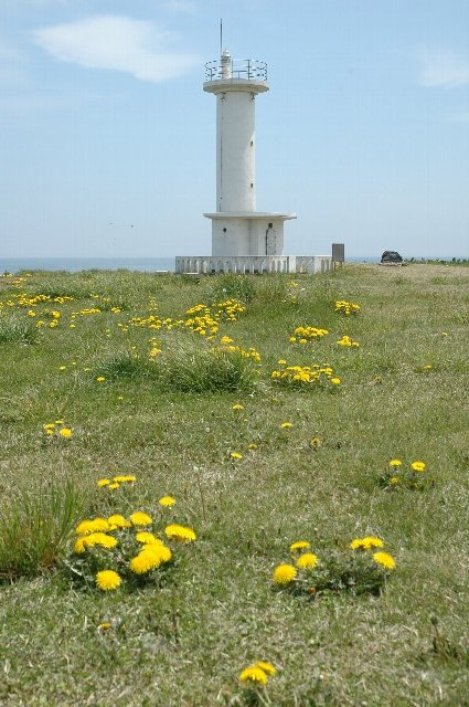 灯台の周りは広い芝生になっていて、のんびりするのに丁度良い。